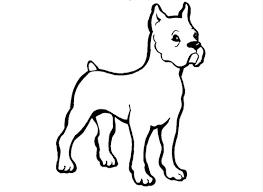 Disegni Cani Da Colorare E Stampare Wikipets
