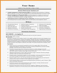 Different Resume Formats Lovely 18 A Professional Resume Free