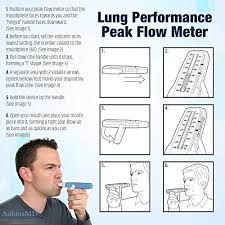 Quest Asthmamd Lung Performance Peak Flow Meter Measures
