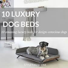 luxury dog beds. 10 LUXURY DESIGNER DOG BEDS Luxury Dog Beds G