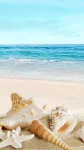 nature sunny ocean seaside beach ss iphone 5s wallpaper