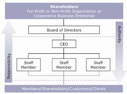 Sample Non Profit Business Plan Proposal Template Free Strategic ...