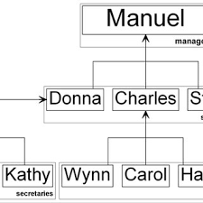 Formal Organizational Chart Formal Organizational Structure Of Inspected Fictitious Firm