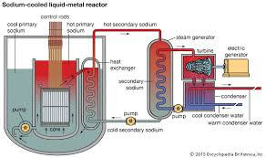 nuclear reactor   britannica comschematic diagram of a nuclear power plant using a pool type sodium cooled liquid