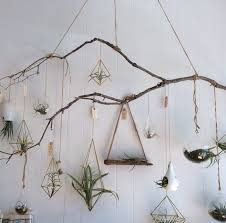 Branch Decorations For Home 25 Unique Tree Branch Decor Ideas On Pinterest  Branches Tree
