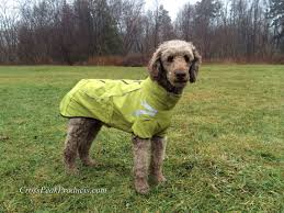 Frost Dog Jacket By Hurtta Dog Bike Carrier Dog Jacket