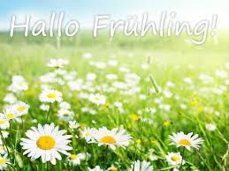 Die Schönsten Frühlingssprüche Und Gedichte Hallo Liebe Sonne