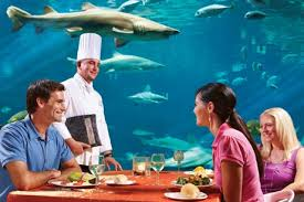 underwater restaurant disney world. Sharks Underwater Grill® Restaurant Disney World