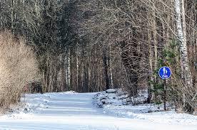 """Résultat de recherche d'images pour """"karis in Finland"""""""