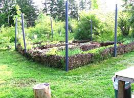 Small Picture Vegetable Garden Ideas For Small Yards Design Your Life