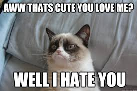 Aww thats cute You Love me? Well I Hate You - Misc - quickmeme via Relatably.com