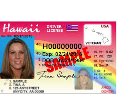 Renewing Check Your License Documents Before