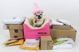 april pug birthday presents