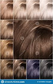 Sample Hair Colors Chart Hair Color Palette With A Wide Range Of Swatches Dyed Hair