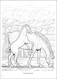 Small Picture 53 best Horses images on Pinterest Coloring books Horse