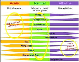 Cannabis Ph Chart Soil Ph Chart Unltddelhi Org