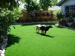 Small Picture 171 best Dog friendly garden ideas images on Pinterest Garden