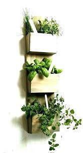 plant holders for wall wall mounted plant pots wall mounted plants wall mount planter pleasant idea wall mount planter lovely wall mounted plant pots