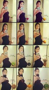 Baby Bump Chart Pregnancy Tummy Size Chart Pregnancy Bump
