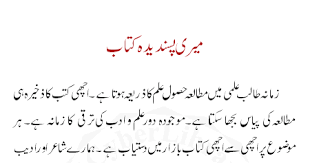 Iqbal Ka Tasawwur e Shaheen   Pakistan Social Web Essay writing topics urdu language   Writing Essay  th Grade