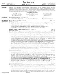 It Director Resume Sample It Director Resume Sample Template Manager