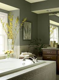 bathroom paint ideas green. Green Bathroom Ideas - Rainforest Retreat Paint Colour Schemes N