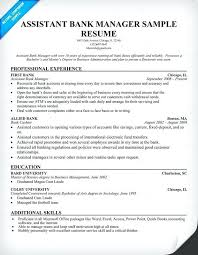 Bank Manager Resume Template Delectable Business Management Resume Examples Sample Business Manager Resume