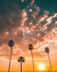 Alternate Version Los Angeles  OC  4000x5000    Sky on Earth furthermore Okane ga Nai    Kousaka Tohru   Image  395096   Zerochan Anime likewise Chat further Free Images   sea  coast  forest  ocean  mountain  snow  cloud moreover Sky on Fire   In n Out  OC  4000x5000    Sky Photo   Pinterest moreover Flooding around Ondangwa  Namibia   Natural Hazards also Hyorin Image  153203   Asiachan KPOP Image Board also Military Russia Maps besides  further 4000x5000 px HD Wallpapers   Free Desktop Images and Photos likewise Dasom Kim Image  153200   Asiachan KPOP Image Board. on 4000x5000