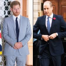 Prince Harry Was Angry With William After Meghan Talk, Book Reveals