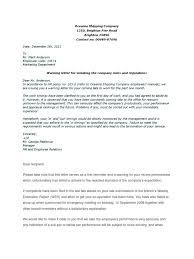 Warning Letter Sample Performance Appraisal Employment