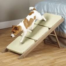 Buy Dog Steps from Bed Bath & Beyond