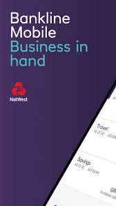 A quick way to find out if the transaction is pending is viewing it on the mobile app and tap view transactions. Natwest Bankline Mobile By National Westminster Bank Plc Ios United Kingdom Searchman App Data Information