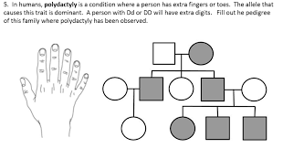Polydactyly Pedigree Chart Analyzing Human Pedigrees Science Lessons Genetics Biology