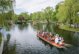 in the neighborhood the swan boats at boston s public garden