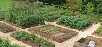 Small Picture Amazing of Best Vegetable Garden Layout Jung Seed Vegetable Garden