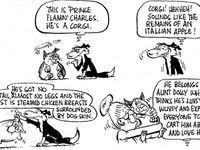 160 Corgi Funnies ideas | corgi, corgi <b>funny</b>, <b>corgi</b> cartoon