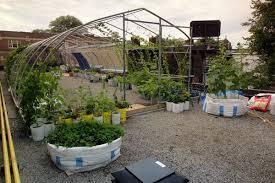 Small Picture Vegetable Roof Garden Gallery Garden Design