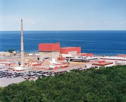 non nuclear power plants sue to stop subsidies for cny nukes why won t new york show details of 35m deal fitzpatrick nuke owner
