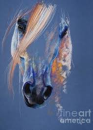 Image result for paulina stasikowska 3 white arabian horses in water