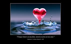 Amour Citations Love Quotes Wallpaper 24322238 Fanpop