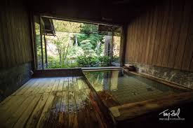 Image result for japanese onsen