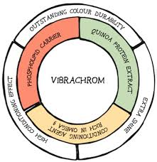 Mask With Vibrachrom Color Chart