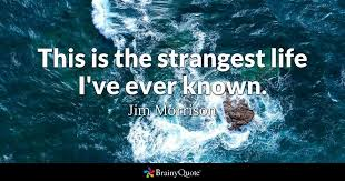 Jim Morrison Quotes Custom Jim Morrison Quotes BrainyQuote