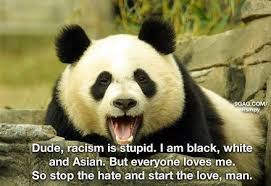 Anti Racism Quotes Cool 48 Best Racism Quotes And Sayings