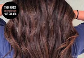 Chestnut Hair Colour Chart 28 Albums Of Chestnut Brown Hair Color Chart Explore