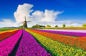 Enthalten sind sowohl aktuelle als auch spieler, die in den vergangenen 12 monaten ein spiel bestritten haben. Ferienwohnung Ferienhaus In Den Niederlanden Urlaub In Holland