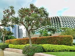 9 best rooftop gardens in singapore
