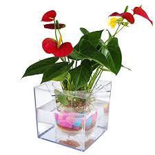 office pot plants. Petbob Flower Pot, Decorative Plant Self-Watering Mini Pot+Fish Tank,Beautiful DIY Home Office Desk Decor Christmas Gift,Complimentary:Luminous Pot Plants