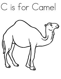 Small Picture Camel Coloring Pages Coloring Pages Free blueoceanreefcom
