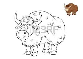 Small Picture Himalayan Cow Images Stock Pictures Royalty Free Himalayan Cow
